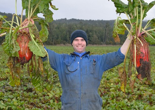 Tax Saving Advice for Farmers